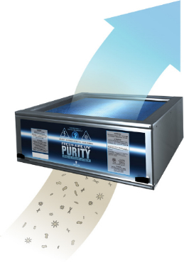 Purity air purification system - from dirty to clean!